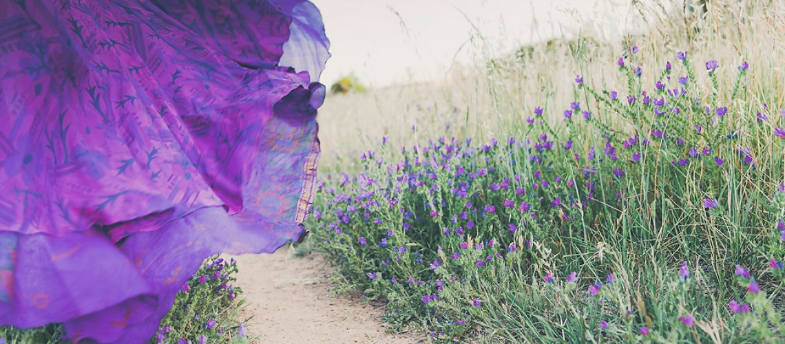 WellSorted, Vision, Tracy Lee Photography, Patterson's Curse, Purple Flowers, Freedom, Decluttered